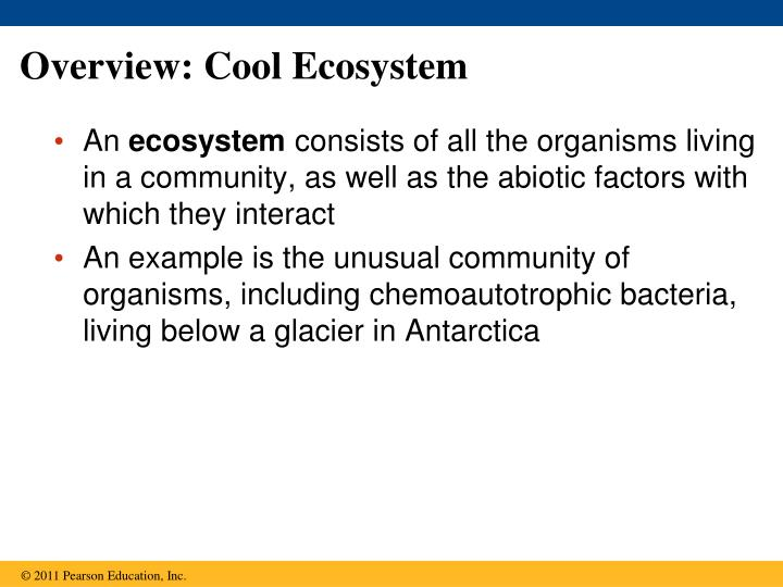 Overview cool ecosystem
