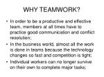 why teamwork