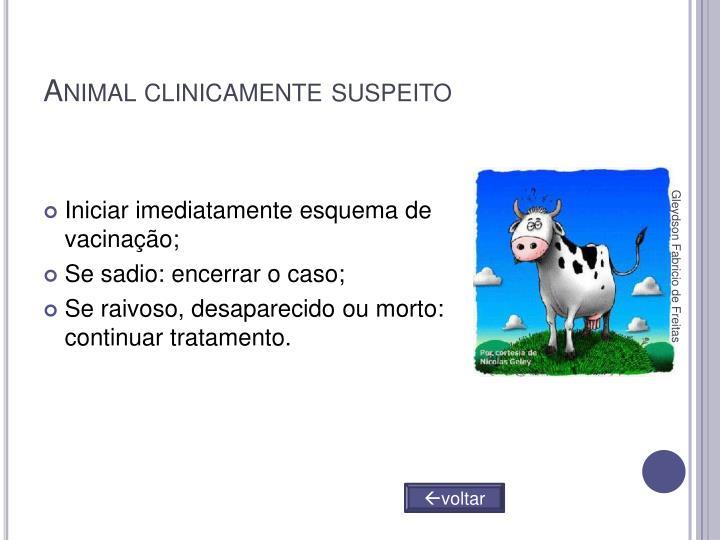 Animal clinicamente suspeito