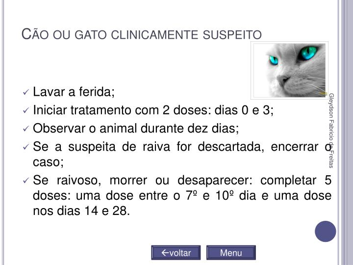 Cão ou gato clinicamente suspeito