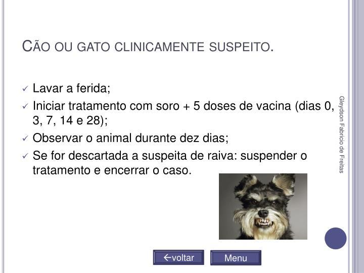 Cão ou gato clinicamente suspeito.