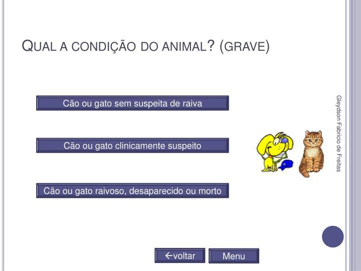 Qual a condição do animal? (grave)
