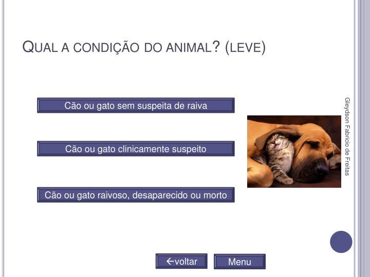 Qual a condição do animal? (leve)