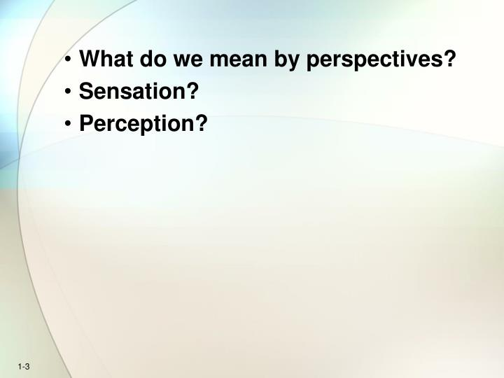 What do we mean by perspectives?