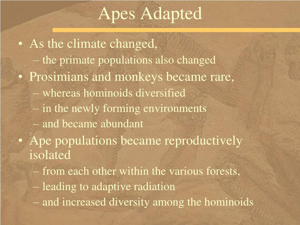 Apes Adapted