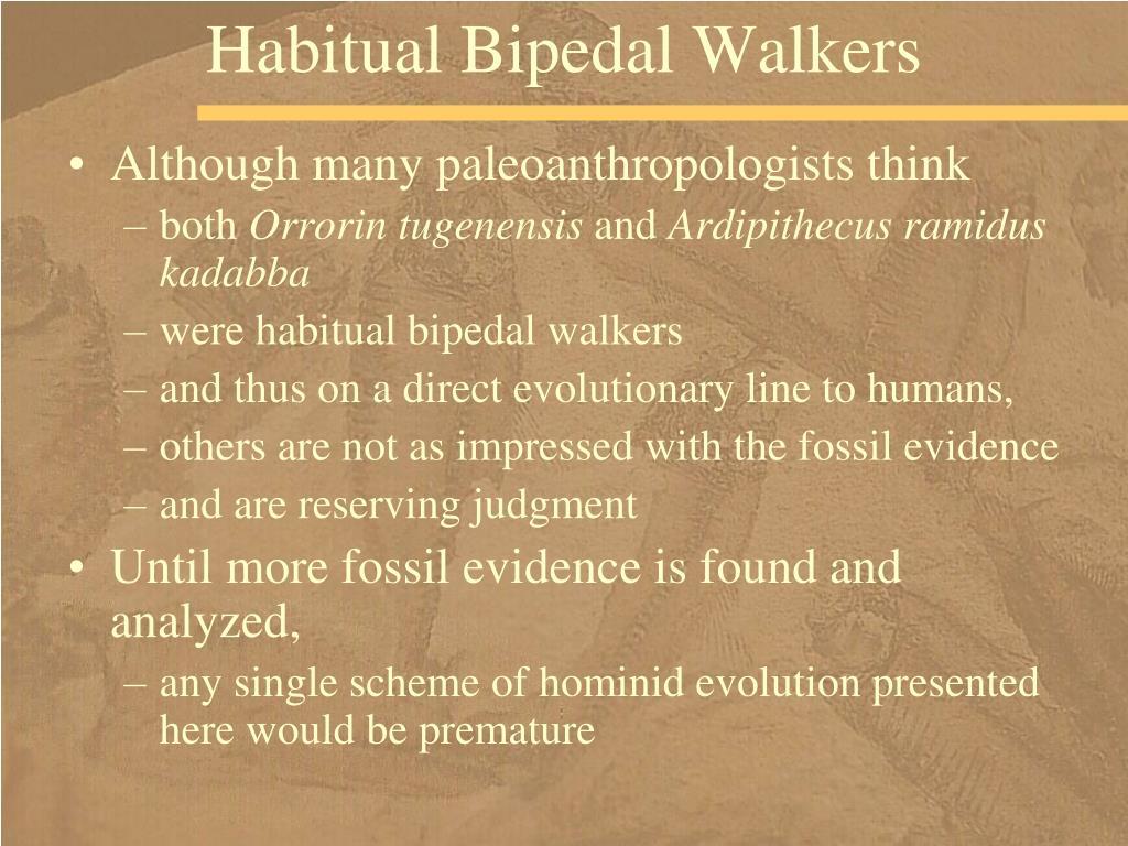 Habitual Bipedal Walkers