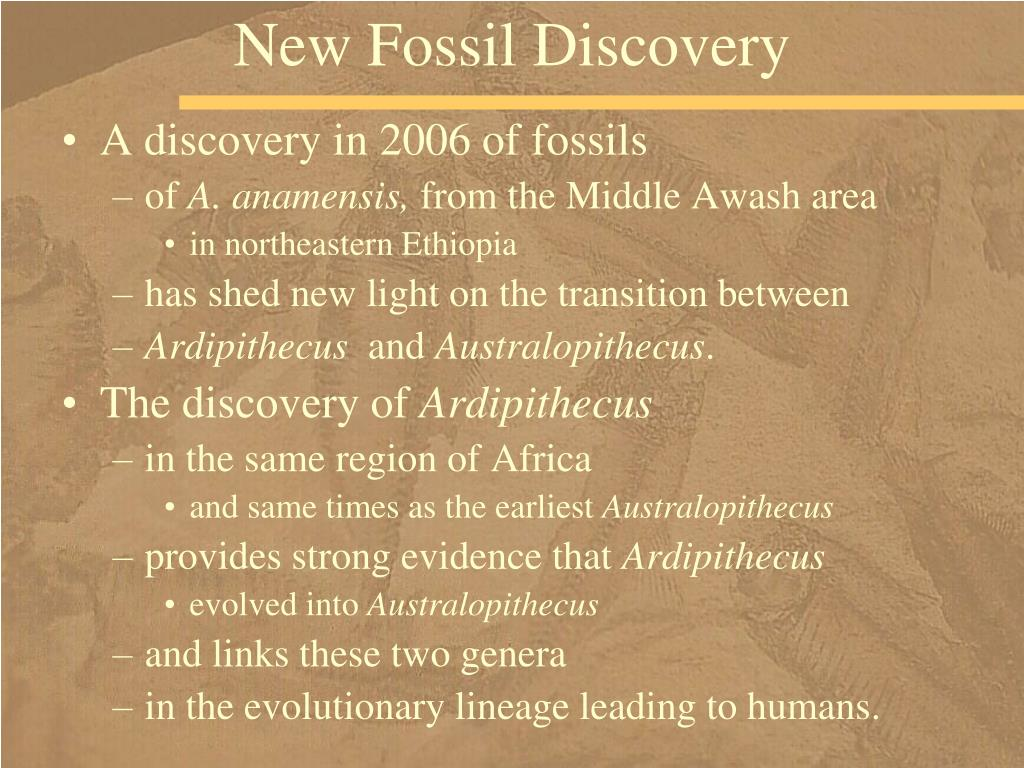 New Fossil Discovery
