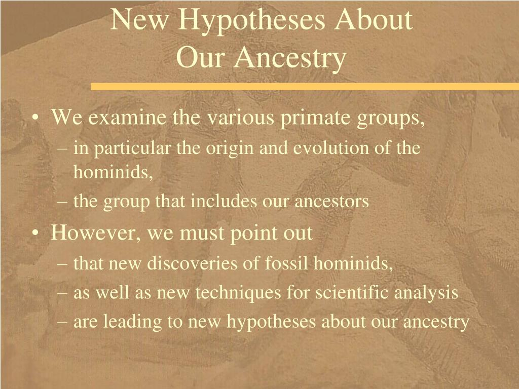 New Hypotheses About