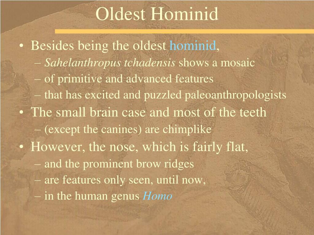 Oldest Hominid
