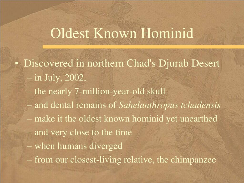 Oldest Known Hominid