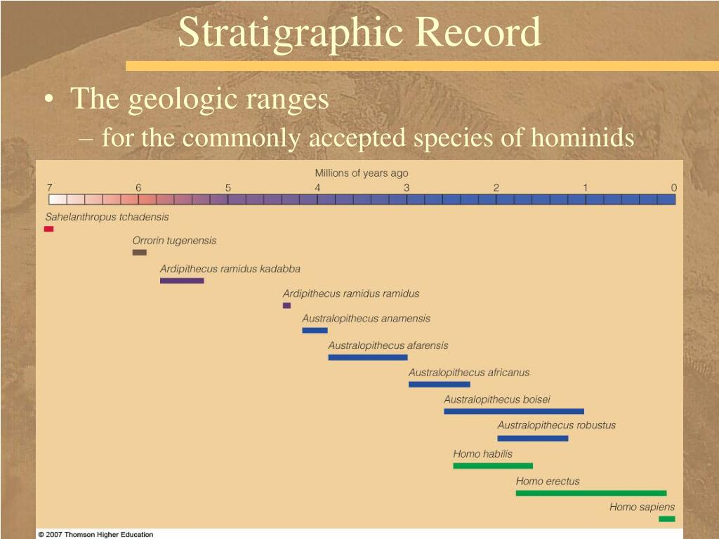 Stratigraphic Record