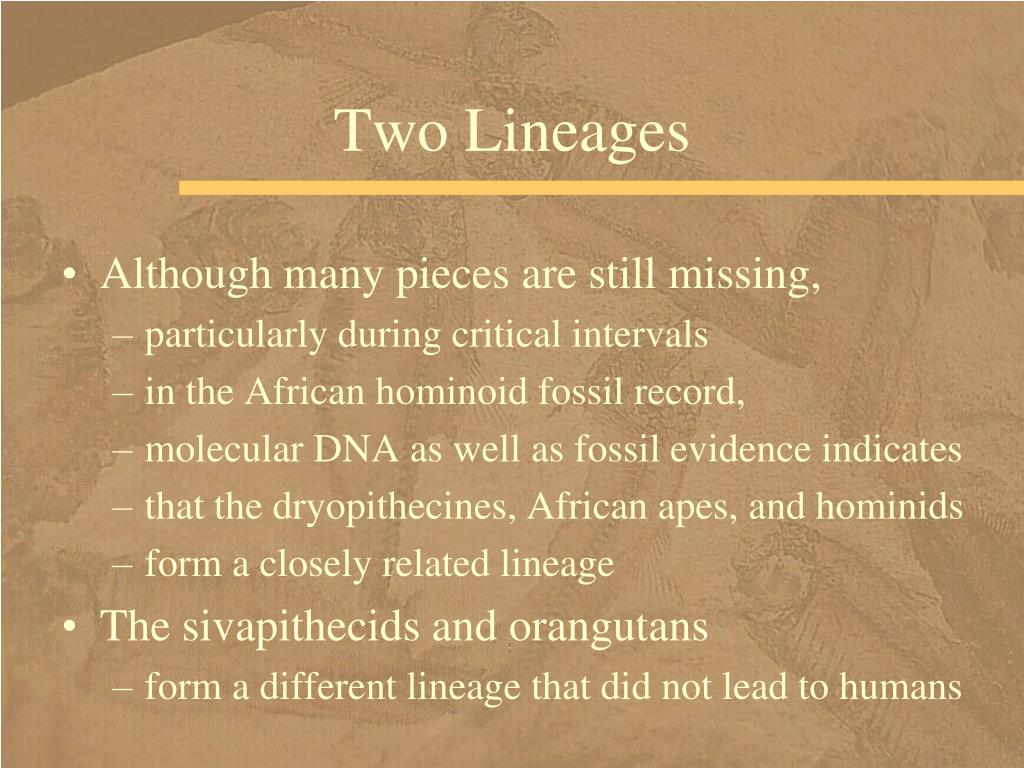Two Lineages