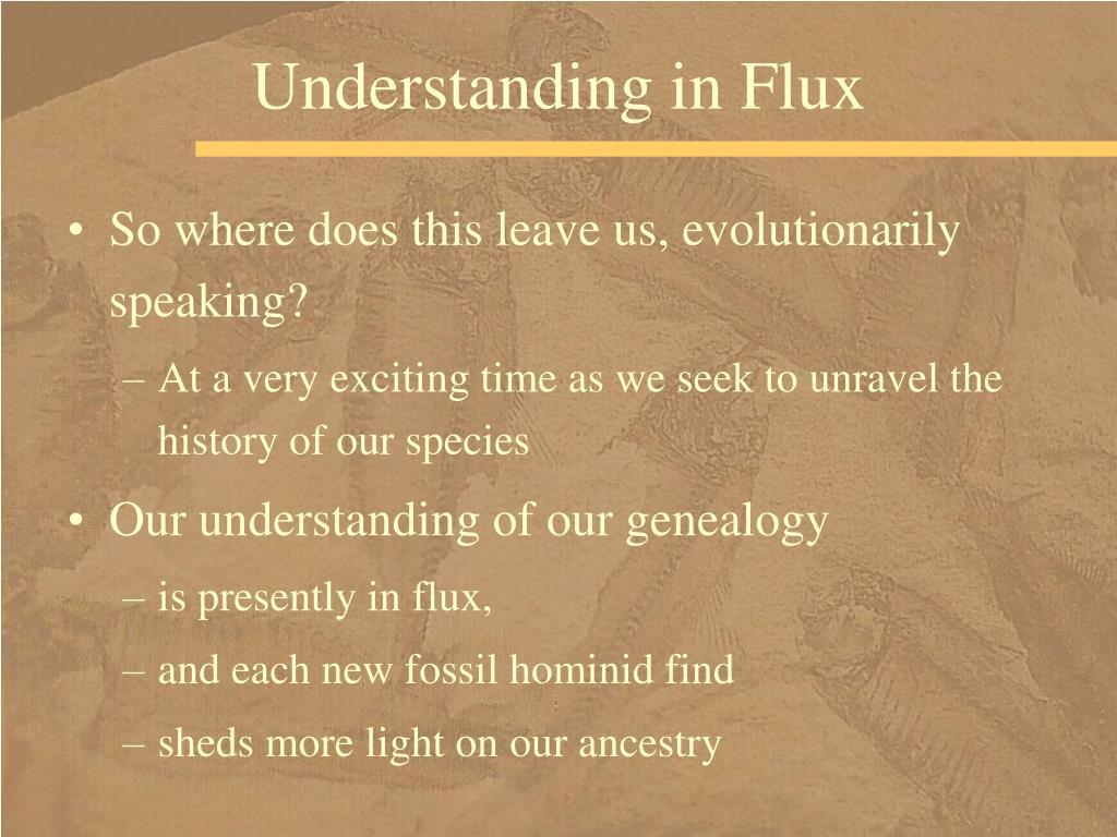 Understanding in Flux