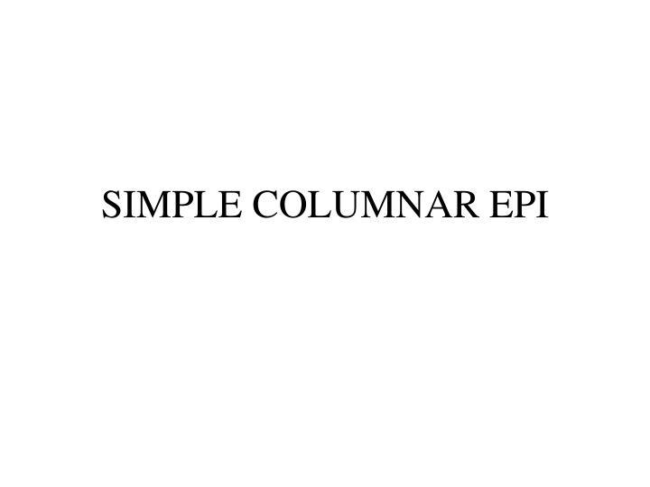SIMPLE COLUMNAR EPI