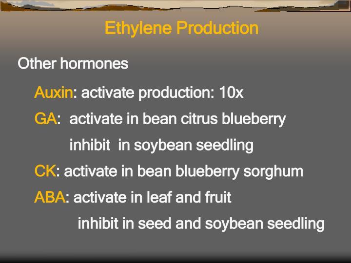 Ethylene Production