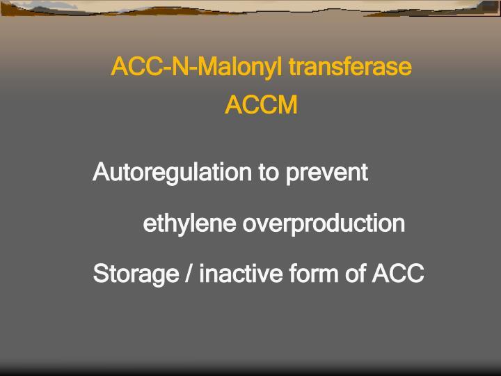 ACC-N-Malonyl transferase