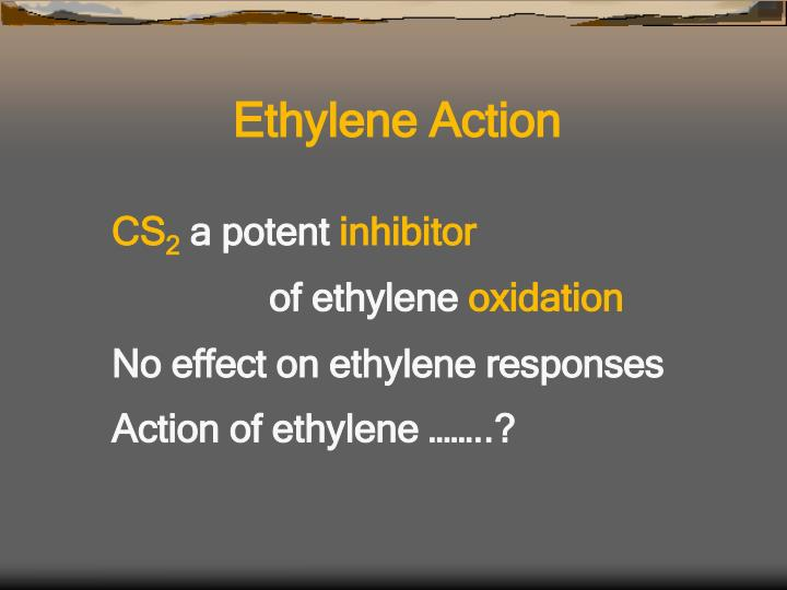 Ethylene Action