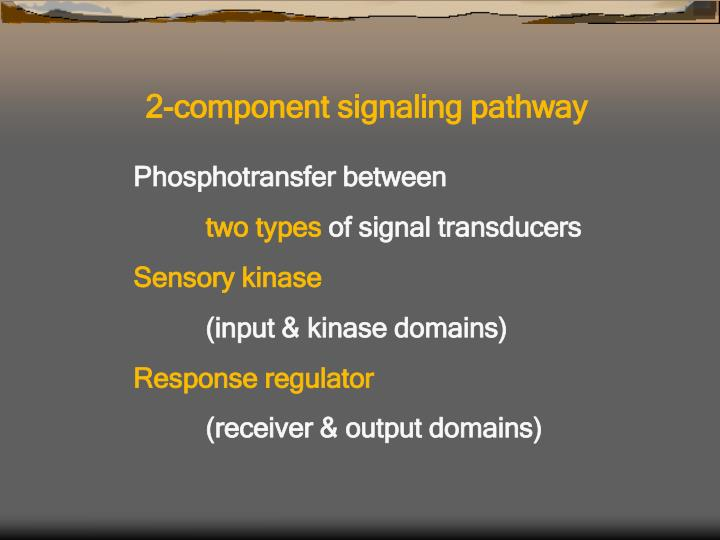 2-component signaling pathway