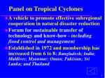 panel on tropical cyclones