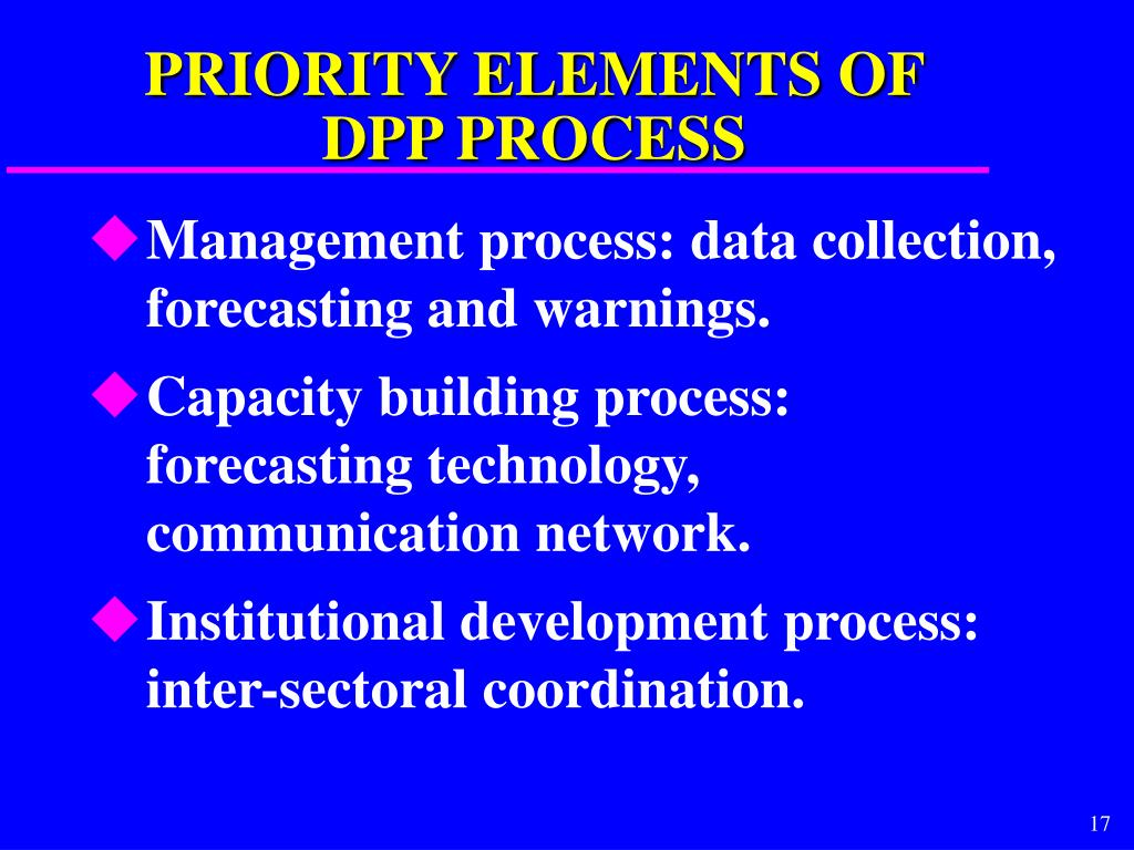 PRIORITY ELEMENTS OF DPP PROCESS