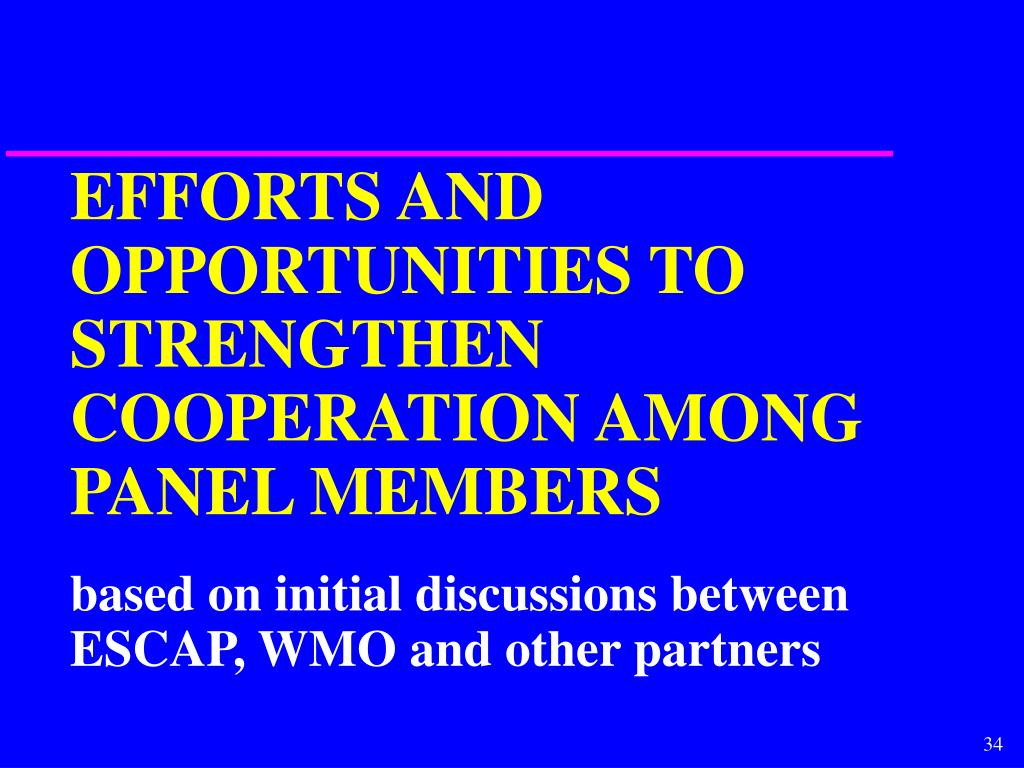 EFFORTS AND OPPORTUNITIES TO STRENGTHEN COOPERATION AMONG PANEL MEMBERS