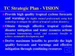 tc strategic plan vision