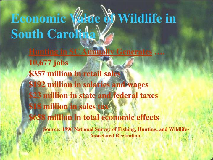 Hunting in SC Annually Generates