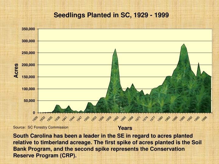 Source:  SC Forestry Commission