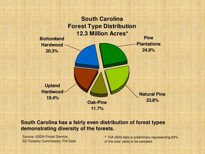 South Carolina has a fairly even distribution of forest types demonstrating diversity of the forests.