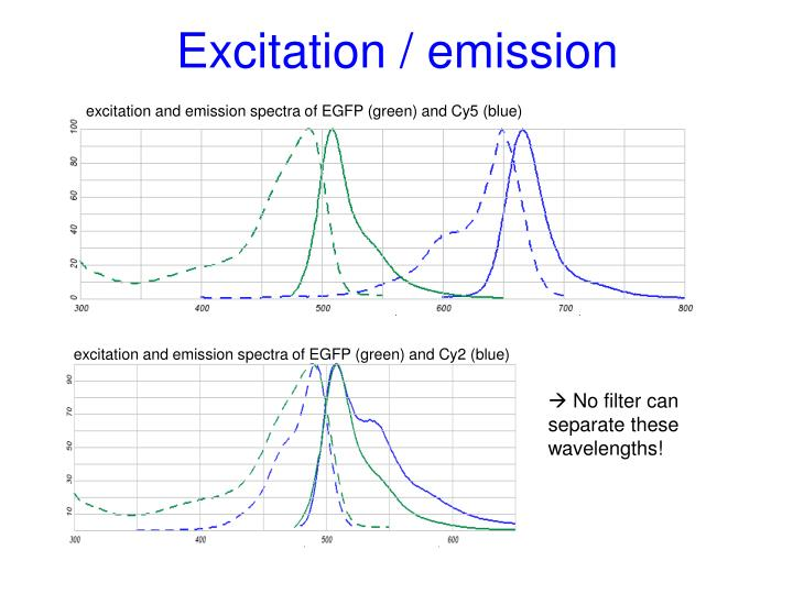 excitation and emission spectra of EGFP (green) and Cy5 (blue)
