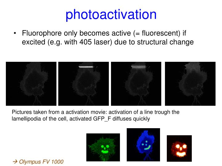 photoactivation