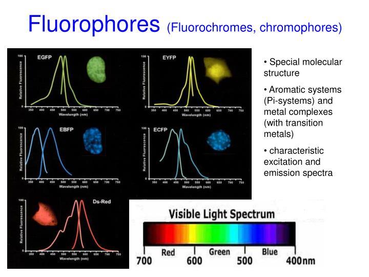 Fluorophores