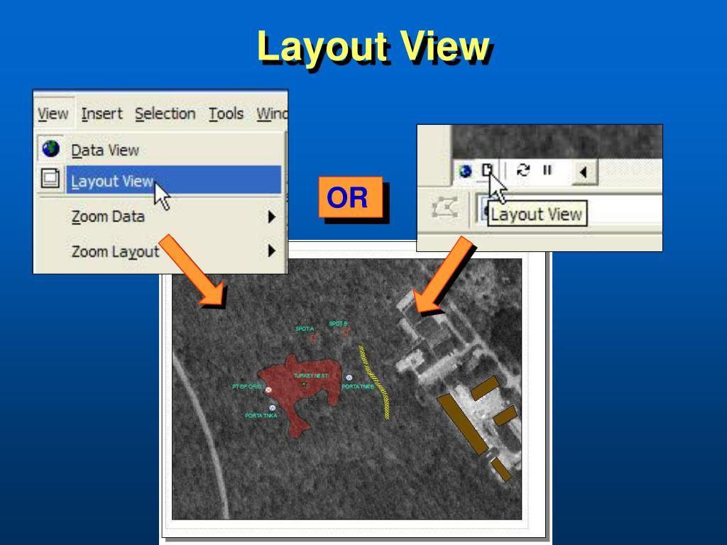 Layout View