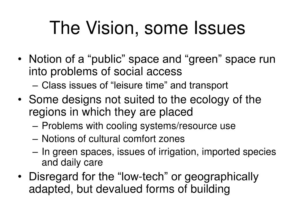 The Vision, some Issues
