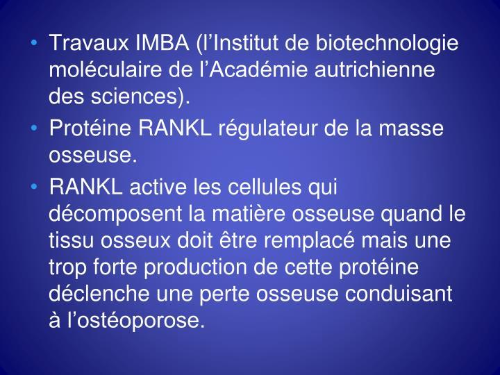 Travaux IMBA (l'Institut de biotechnologie moléculaire de l'Académie autrichienne des sciences).