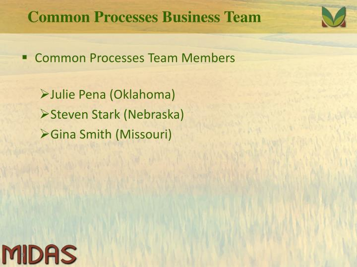 Common Processes Business Team