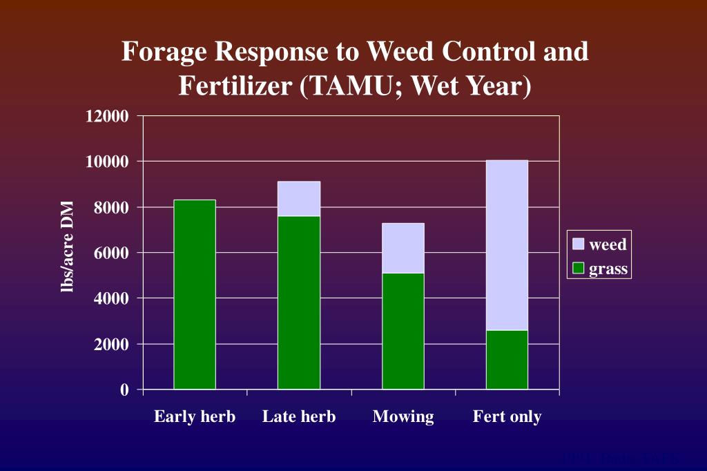 Forage Response to Weed Control and Fertilizer (TAMU; Wet Year)