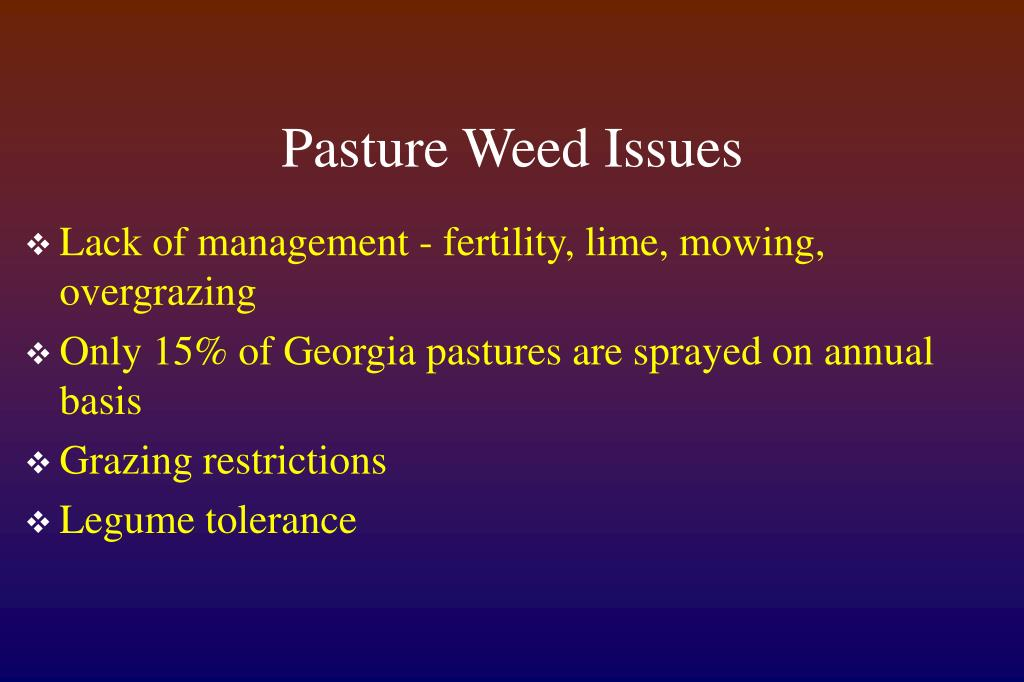 Pasture Weed Issues
