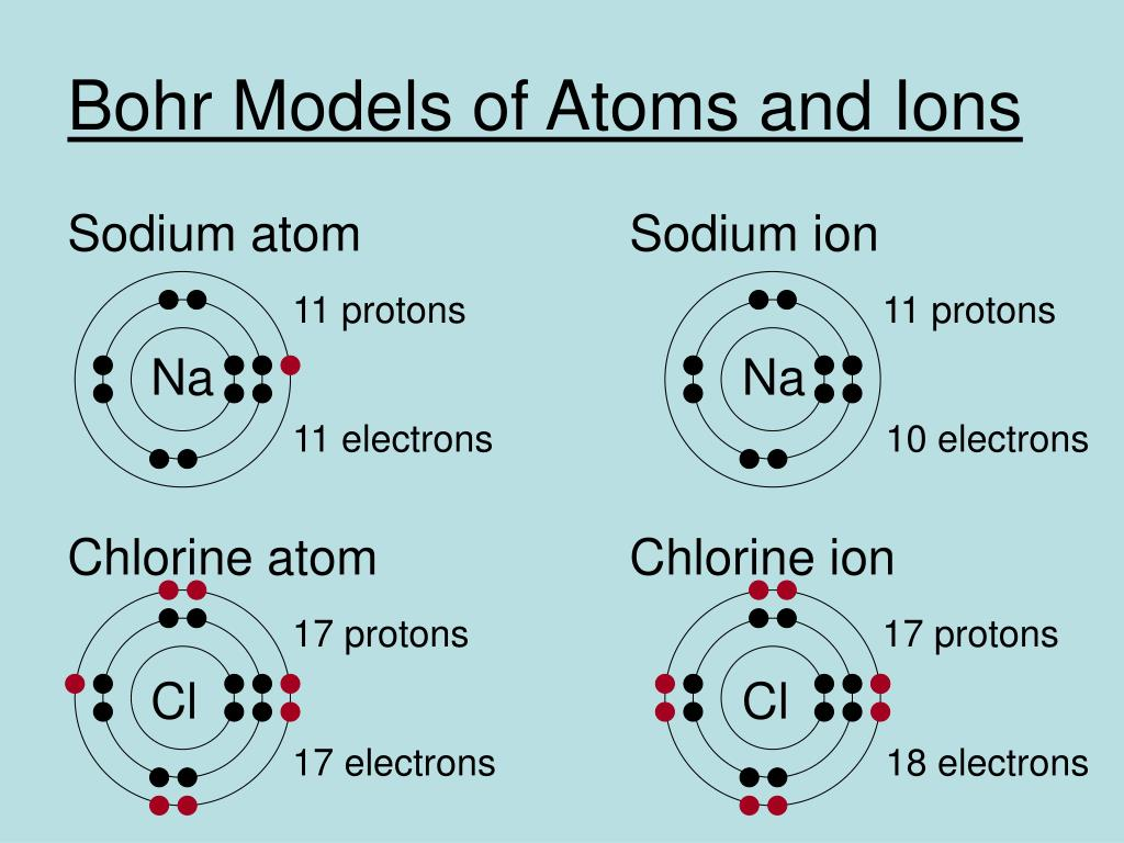 Bohr Models of Atoms and Ions