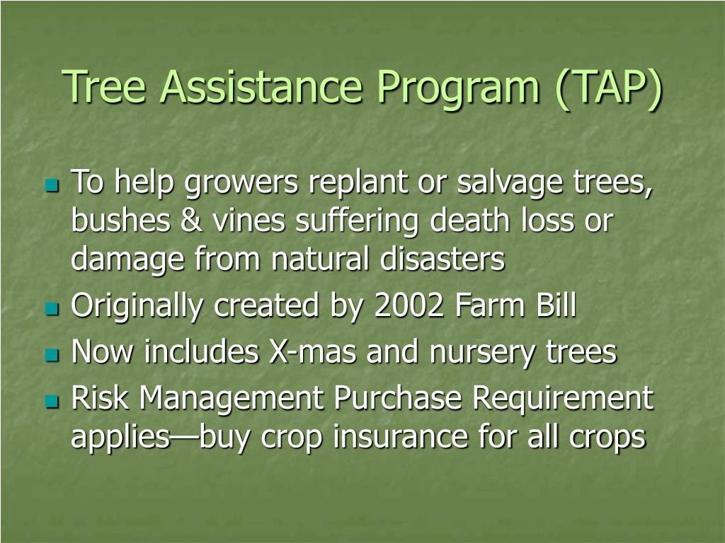 Tree Assistance Program (TAP)