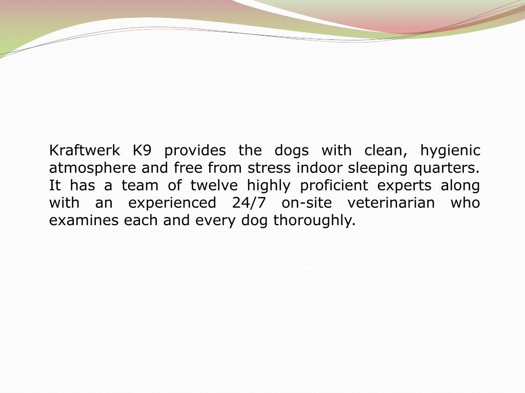 Kraftwerk K9 provides the dogs with clean, hygienic atmosphere and free from stress indoor sleeping quarters. It has a team of twelve highly proficient experts along with an experienced 24/7 on-site veterinarian who examines each and every dog thoroughly.