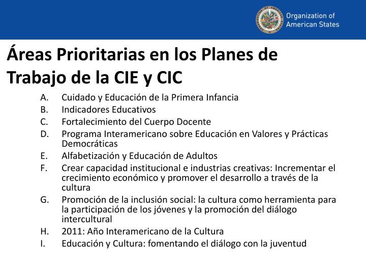 Áreas Prioritarias en los Planes de Trabajo de la CIE y CIC