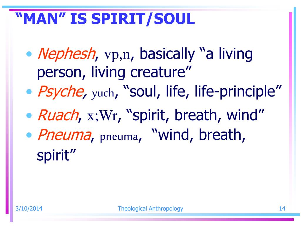 """MAN"" IS SPIRIT/SOUL"