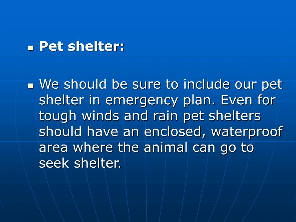 Pet shelter: