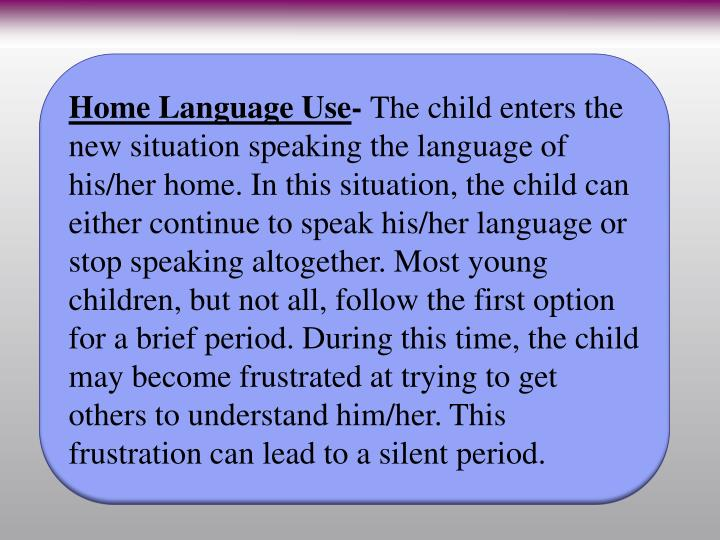 Home Language Use