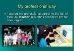my professional way