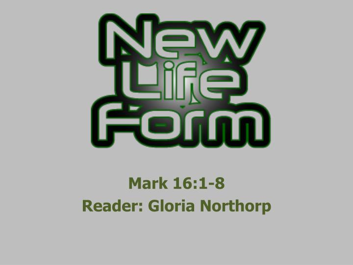 Mark 16 1 8 reader gloria northorp