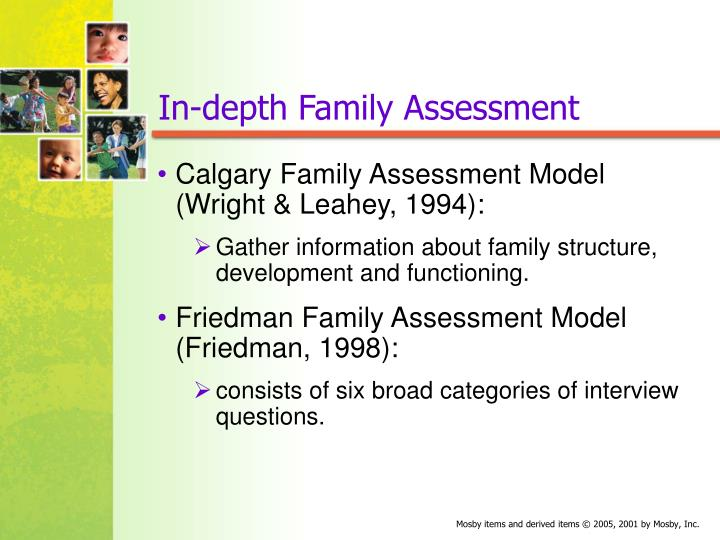 family health assessment Through the child and family health services grant and third-party income   and health education services, it also provides community health assessment  and.