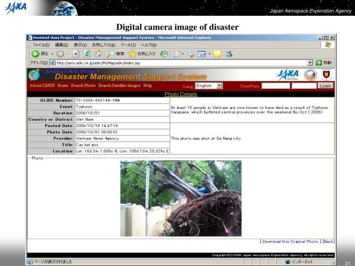 Digital camera image of disaster