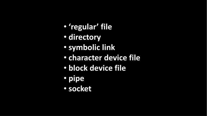 'regular' file